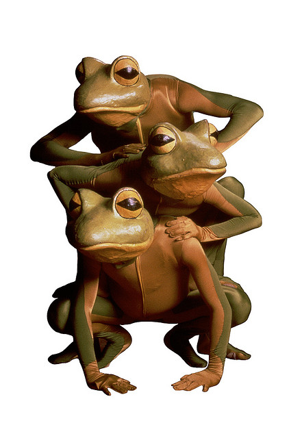 The frogs from Frogz.